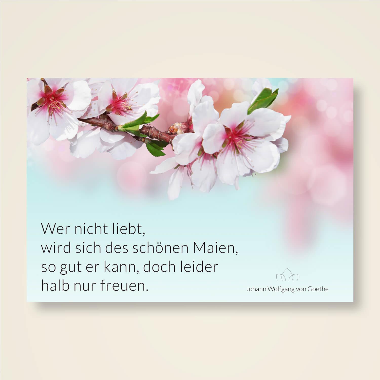 Liebe goethe zitat Goethe Zitate,