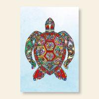 Grußkartenset Turtle Motiv 1 Geist und Geschenk