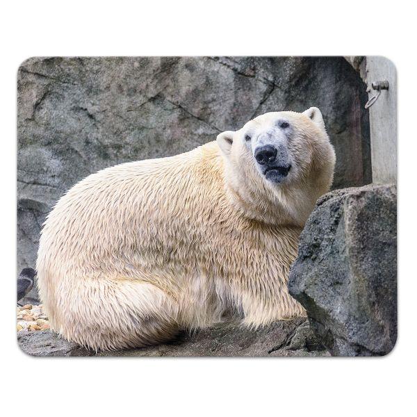 Mousepad 'Eisbär'
