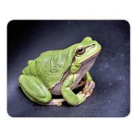 Mousepad 'Frosch'