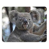 Mauspad Koala