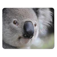 Mousepad Koala