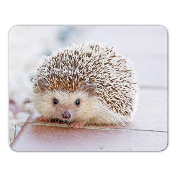 Mousepad 'Igel'