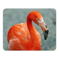 Mousepad 'Flamingo'