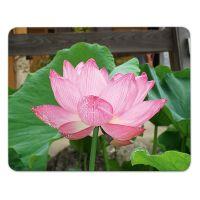 Mauspad/Mousepad Lotusblume Motiv bedruckt 3