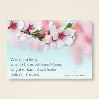 Goethe Zitat Liebe auf Grusskarte gedruckt - Geist und Geschenk
