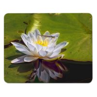 Mauspad/Mousepad Lotusblume Motiv bedruckt 2