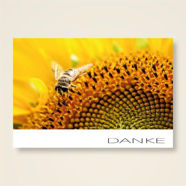 Grusskarten Set 'DANKE' Neues Design