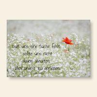 Grußkarten Set Jane Austen Blumenwiese Mohn Geist und Geschenk