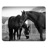 Mousepad 'Pferde'