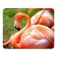 Mousepad 'Flamingo'