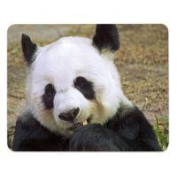 Mousepad 'Panda'