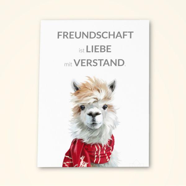 Grusskarten Set 'Freundschaft ist Liebe mit Verstand'