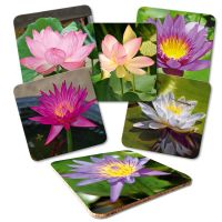 Untersetzer Set 'Lotusblume'