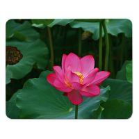 Mauspad/Mousepad Lotusblume Motiv bedruckt 4