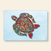 Grußkartenset Turtle Motiv 2 Geist und Geschenk