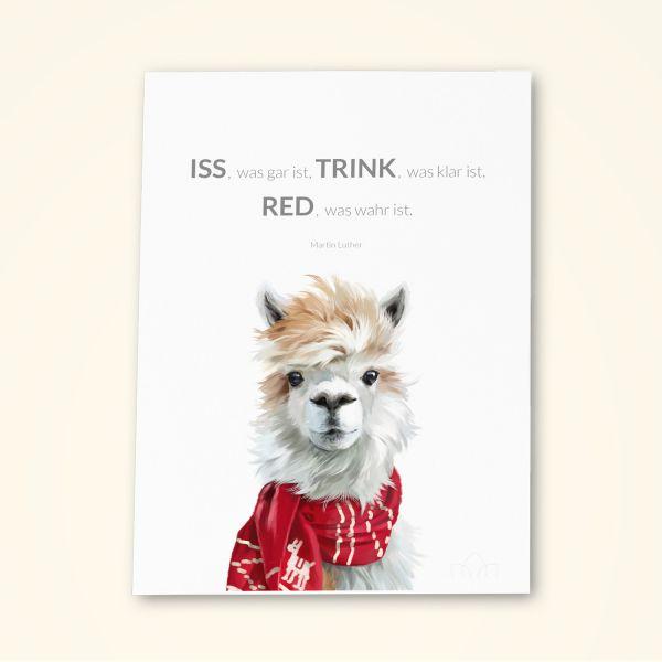 Grusskarten Set Humor 'Iss was gar ist, TRINK was klar ist, RED was wahr ist'