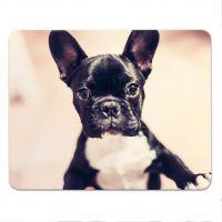 Mousepad Mauspad Tier Französische Bulldogge